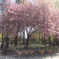 Photo taken at Villo! Jubelpark / Parc du Cinquantenaire (067) by João M. on 4/24/2015