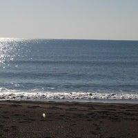 12/14/2014 tarihinde Av Yılmaz K.ziyaretçi tarafından Lara Plajı'de çekilen fotoğraf