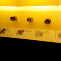 Photo taken at David H. Koch Hall of Human Origins by SpartanFanEric on 6/27/2013