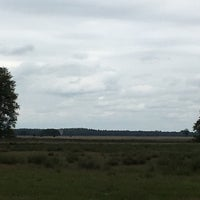 Photo taken at Nationaal Park Dwingelderveld by Bart H. on 6/25/2017
