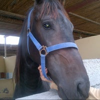 Photo taken at The Stables by Zooooz on 1/11/2014