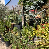 Photo taken at Hollywood Dream Garden by Patrick W. on 9/22/2018