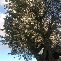 Photo taken at Pura Taman Kemuda Saraswati by Sop on 4/13/2018