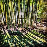 Photo taken at Japanese Friendship Garden by Agnieszka J. on 1/12/2013