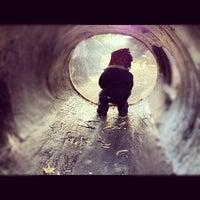 Photo taken at Central Park - Tisch Children's Zoo by Jenny K. on 11/5/2012