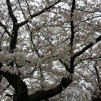 Photo taken at さきたま古墳公園 by Takashi on 3/29/2013