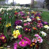 3/17/2013 tarihinde Seçil D.ziyaretçi tarafından Soğanlı Botanik Parkı'de çekilen fotoğraf
