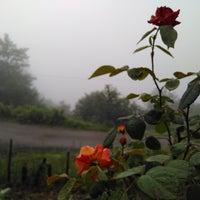 Photo taken at Çatak köyü by Gülsüm U. on 7/5/2017