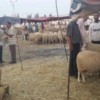 Photo taken at Souk Manouba by Chems eddine B. on 9/23/2014