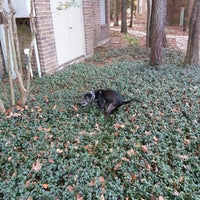 Photo taken at Tamarac Dog Park by Brandon C. on 12/6/2012