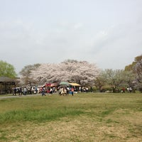 Photo taken at さきたま古墳公園 by Wesley S. on 3/29/2013
