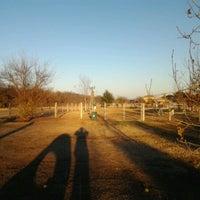 Photo taken at Round Rock Dog Depot by Aldemio M. on 1/6/2013