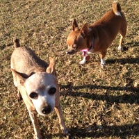 Photo taken at Chaparral Dog Park by DriveMyDog .. on 11/25/2012