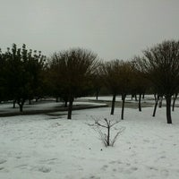 Photo taken at King Hussein Park by Lynn A. on 1/9/2013