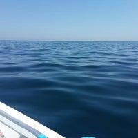 Photo taken at Marmara Denizi by Özcn E. on 8/21/2014