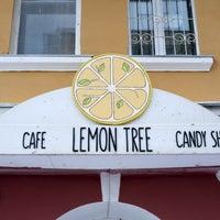 Снимок сделан в Lemon Tree пользователем Olga B. 1/5/2015