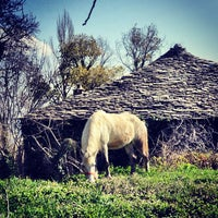 Photo taken at Mount Pelion by DiscoverPelio on 3/31/2013