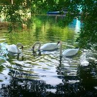 รูปภาพถ่ายที่ Gorky Park โดย Татьяна Г. เมื่อ 7/17/2013