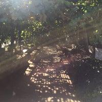 Photo taken at Underground Gardens - Baldasare Forestiere by Michael S. on 10/29/2016