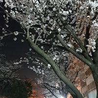 Photo taken at 助六夢通り by TERATABI(←取り扱い注意❗飲み過ぎ😵🍺🌀危険💓〰️💣💥) (. on 3/28/2018
