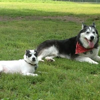 Photo taken at Howard Dog Park by Gloria (Glorioke) B. on 8/18/2013
