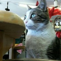 Photo taken at BC SPCA Vancouver (East) Thrift Store by Elnur A. on 7/3/2016