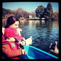 Снимок сделан в Zoo Lake пользователем G@reth 6/17/2013