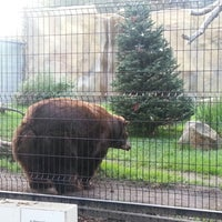 Photo taken at Orange County Zoo by Natalie P. on 12/9/2012