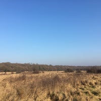 Photo taken at Epping Forest Track by Thomas R. on 1/22/2017