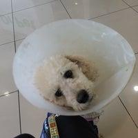 Photo taken at Dr. Pet by Joy S. on 9/9/2014