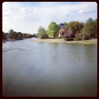 Photo taken at Addison Les Lacs Duck Pond by Elysa E. on 4/6/2013