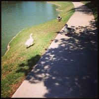 Photo taken at Addison Les Lacs Duck Pond by Elysa E. on 5/11/2013