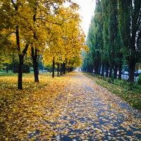 Снимок сделан в Русановская набережная пользователем Katrin 💎 10/15/2013