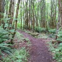 Photo taken at Big Tree Ridge Trailhead - Cougar Mountain by Brian on 5/22/2016
