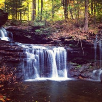Photo taken at Ricketts Glen State Park by Aaron C. on 10/24/2012
