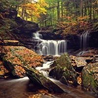 Photo taken at Ricketts Glen State Park by Aaron C. on 10/16/2012