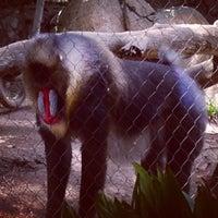 Photo taken at Monkey Trail by Duyen F. on 6/2/2014