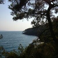 7/16/2013 tarihinde Ayşe Ç.ziyaretçi tarafından Akyaka Orman Kampı'de çekilen fotoğraf