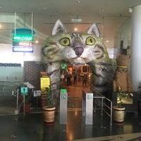 Photo taken at Muzium Kucing (Cat Museum) by Muhammad K. on 5/21/2017