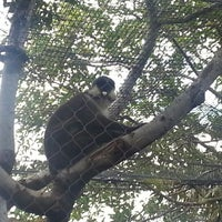 Photo taken at Monkey Trail by Neil F. on 12/30/2012