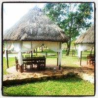 Das Foto wurde bei Cenote San Ignacio von Alejandra C. am 12/27/2012 aufgenommen
