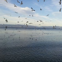 2/3/2013 tarihinde İrem Y.ziyaretçi tarafından Mudanya Sahili'de çekilen fotoğraf