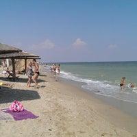 соломенный пляж бердянск фото
