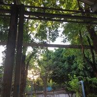 Photo taken at Suandusit University Ranong2 by Jtuinui K. on 1/16/2017
