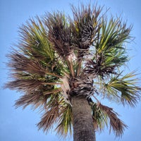 Photo taken at Tybee Island by Maurice on 7/12/2013