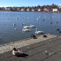 Photo taken at Tjörnin by Kathryn L. on 4/16/2013