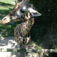 Photo taken at Blank Park Zoo by Casey R. on 7/12/2013