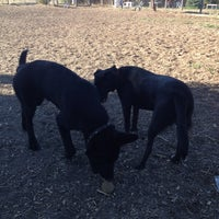 Photo taken at Alston Dog Park by Clay W. on 8/3/2013