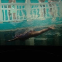 Photo taken at Regal Cinemas Alderwood 7 & RPX by Donna H. on 12/7/2012