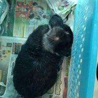Photo taken at Premier Pet Hospital by Patty W. on 2/22/2015